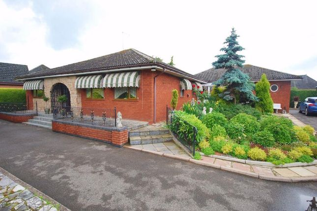 Thumbnail Detached bungalow for sale in Foxes Lowe Road, Holbeach, Spalding