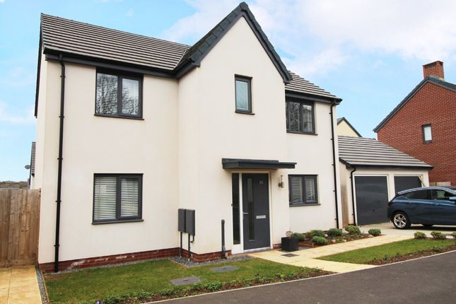 Thumbnail Detached house for sale in White Rock Road, Paignton