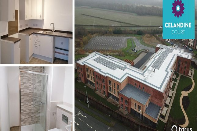Thumbnail Flat to rent in Cheshire Avenue, Northwich