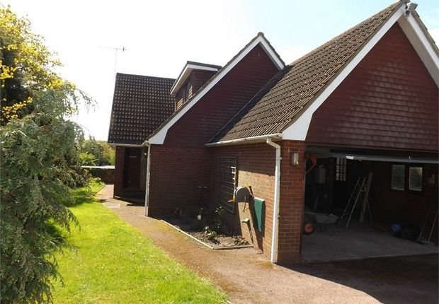 Thumbnail Detached house to rent in Camber Close, Bexhill-On-Sea, East Sussex