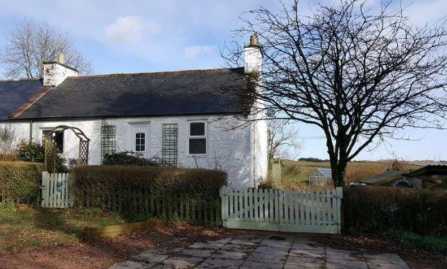 Thumbnail Semi-detached bungalow to rent in Knockvennie, Castle Douglas