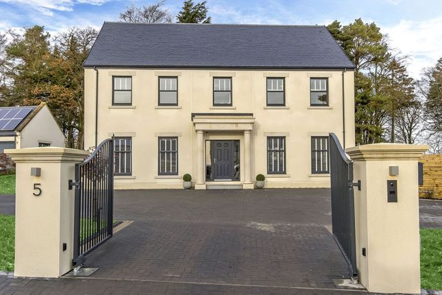 Thumbnail Detached house for sale in Rutherford Gardens, West Linton