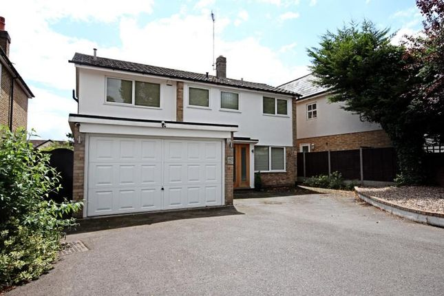 Thumbnail Detached house to rent in St. Johns Avenue, Old Harlow, Essex