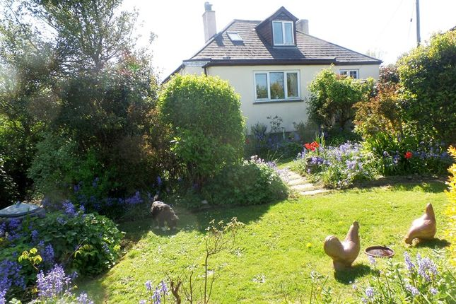 Thumbnail Detached bungalow for sale in Chapel Hill, Bolingey, Perranporth