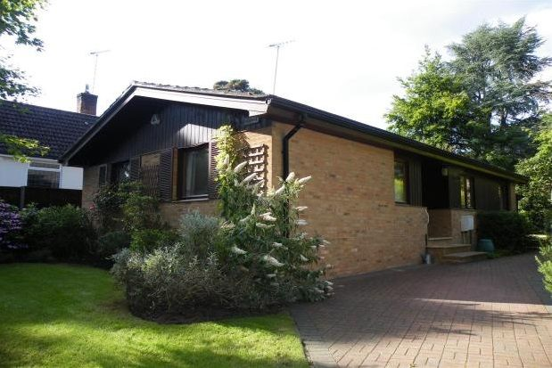 Thumbnail Bungalow to rent in Highclere Drive, Camberley