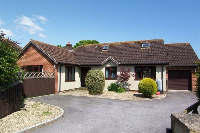 Thumbnail Property for sale in Scalwell Lane, Seaton