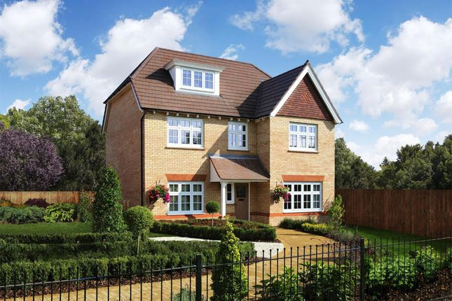 Thumbnail Detached house for sale in Maple Drive, Aston On Trent