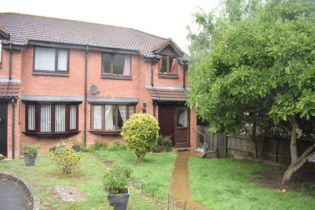 Thumbnail Semi-detached house to rent in The Spinney, Yeovil