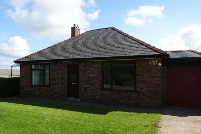 Thumbnail Detached bungalow to rent in Axton, Holywell