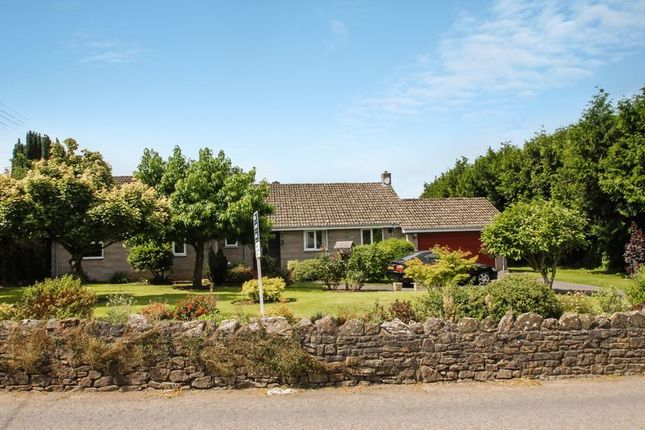 Thumbnail Detached bungalow for sale in Dulcote, Wells