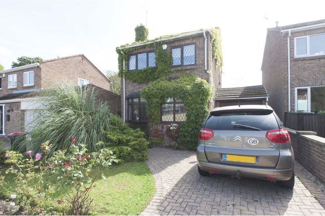 Thumbnail Detached house for sale in Green Rise, Rotherham