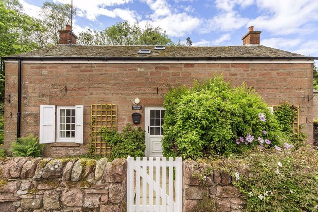 Thumbnail Detached house for sale in Yew Gardens, Muirton Place, New Alyth, Blairgowrie