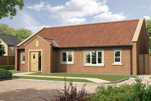 Thumbnail Detached bungalow for sale in The Elm, Nursery Gardens, Stannington, Morpeth (1392 Sq.Ft.)
