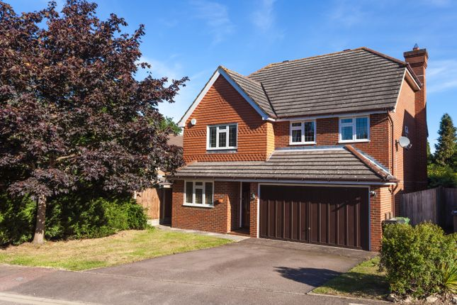Thumbnail Detached house for sale in Russet Drive, Croydon
