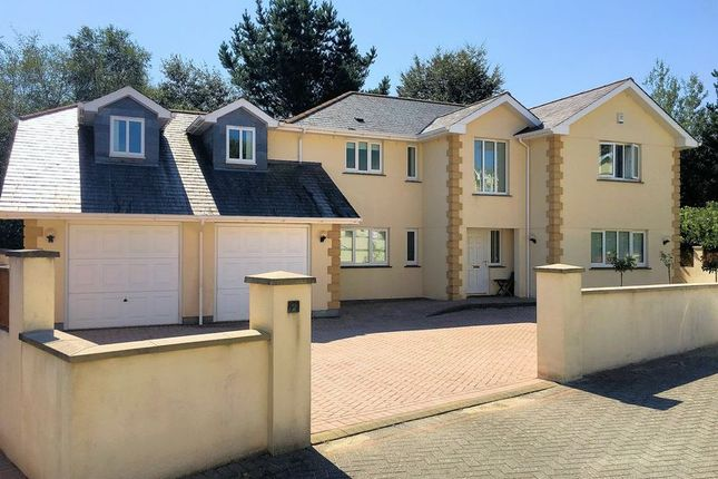 Thumbnail Detached house for sale in Chequer Tree Court, Drakewalls, Gunnislake