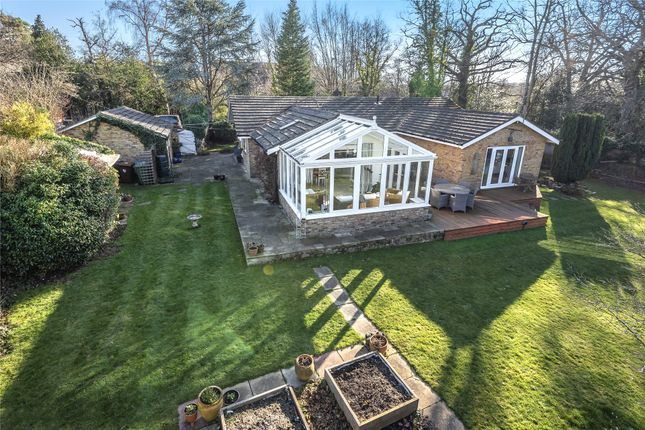 Thumbnail Detached bungalow for sale in Forest Road, Hayley Green, Bracknell, Berkshire