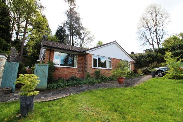 Thumbnail Bungalow to rent in Fairways, Hindhead