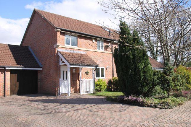 Thumbnail Semi-detached house to rent in Dalby Avenue, Harrogate
