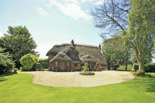 Thumbnail Detached house for sale in Ibsley, Ringwood, Hampshire