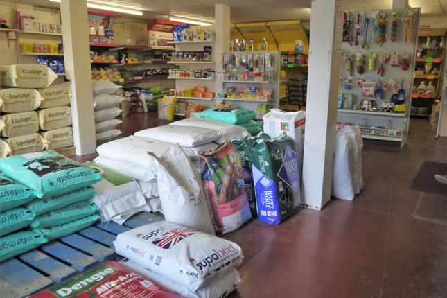 Photo 3 of Pets, Supplies & Services BD12, Wyke, West Yorkshire