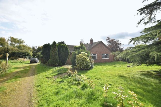 Thumbnail Detached bungalow for sale in North Road, Tetford, Horncastle