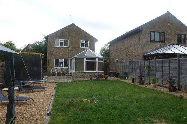 Thumbnail Detached house to rent in Grenfell Road, Bury, Ramsey, Huntingdon
