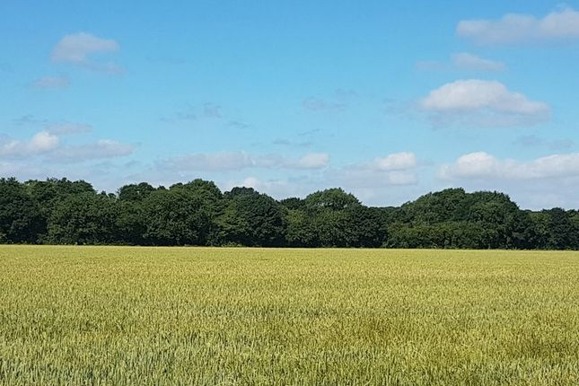 Thumbnail Land for sale in Blithbury Road, Hamstall Ridware, Rugeley