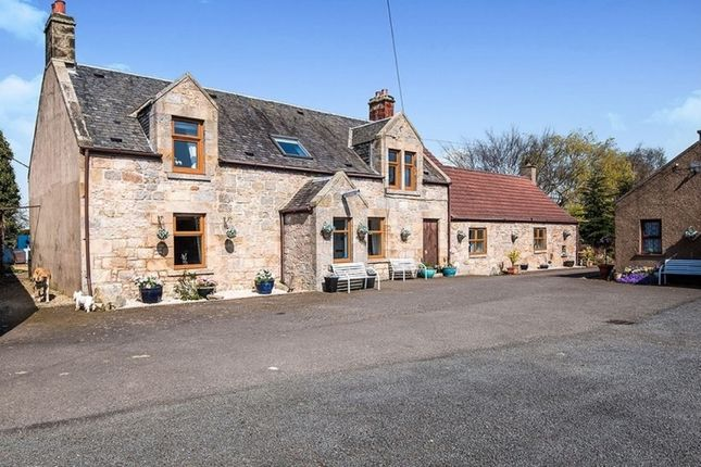 Thumbnail Detached house for sale in Bothkennar, Stirlingshire