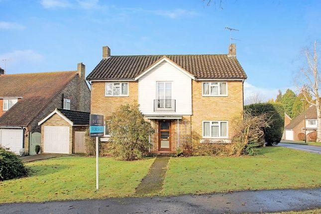 Thumbnail Detached house for sale in Milton Mount Avenue, Crawley