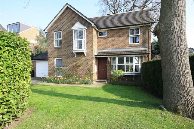 Thumbnail Detached house for sale in Dutch Gardens, Kingston Upon Thames