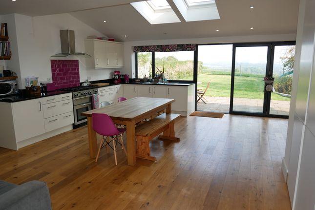 Kitchen Diner / Family Room