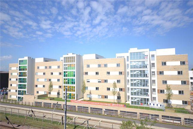 Thumbnail Flat to rent in Glenalmond Avenue, Cambridge, Cambridgeshire