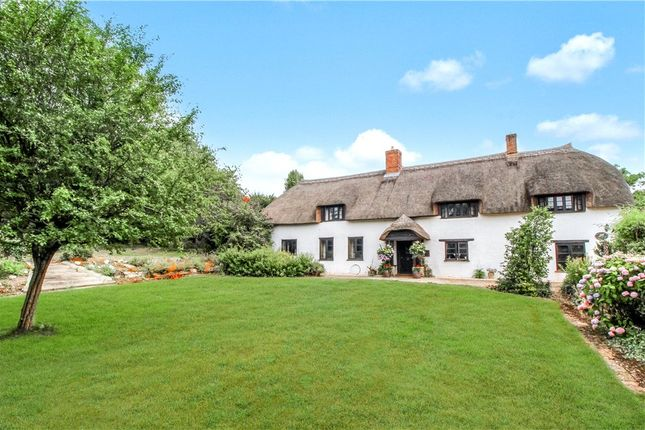 Thumbnail Detached house for sale in Chard Road, Axminster, Devon