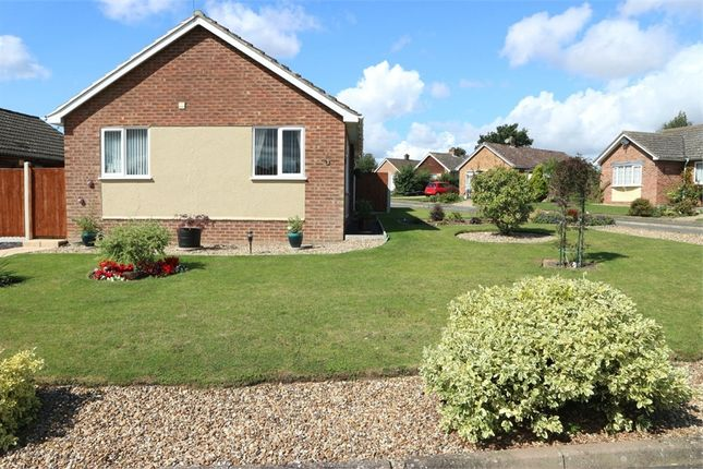 Thumbnail Detached bungalow for sale in Manor Park Gardens, Long Stratton, Norwich, Norfolk