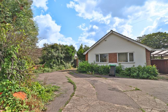 Thumbnail Detached bungalow to rent in Kimbolton Road, Bedford
