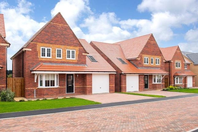 "Thumbnail Detached house for sale in ""Hertford"" at Livingstone Road, Corby"