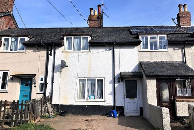 Thumbnail Terraced house for sale in The Farm, Whimple, Exeter