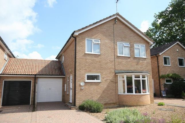Thumbnail Detached house for sale in Fleetwood, Ely