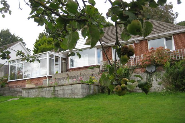 Thumbnail Detached bungalow to rent in College Road, Newton Abbot