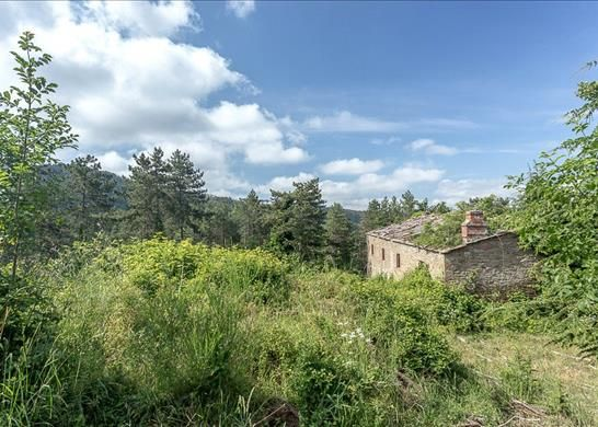 53013 Gaiole In Chianti Province Of Siena, Italy