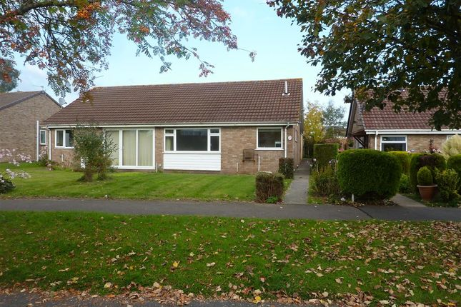 Thumbnail Semi-detached bungalow to rent in Elan Way, Caldicot