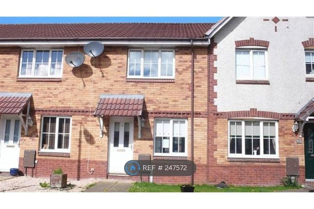 Thumbnail Terraced house to rent in Acer Grove, Chapelhall
