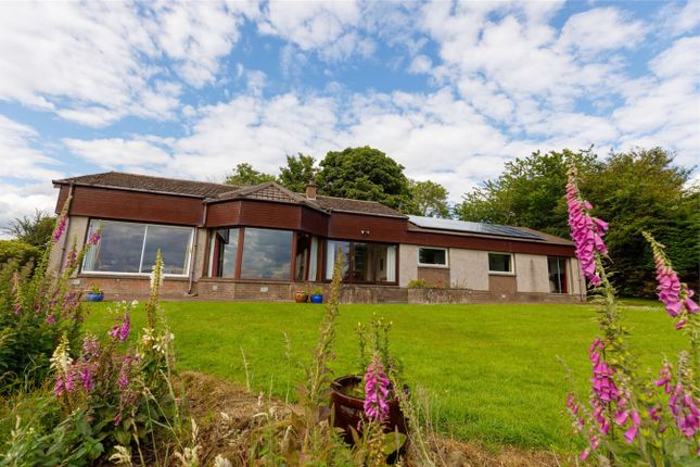 Thumbnail Detached bungalow for sale in Lochlands, Pittendreich, Kinross-Shire