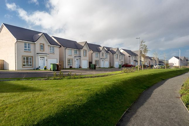 "4 bedroom detached house for sale in ""Cullen"" at Kildean Road, Stirling"