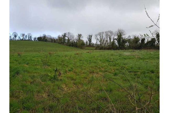 Land for sale in Loop Road, Newtownbutler BT92