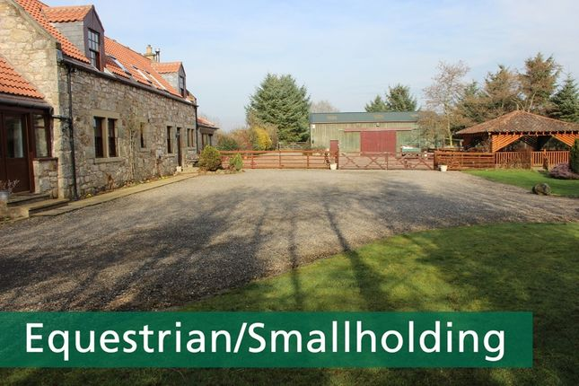 Thumbnail Detached house for sale in Whitehills Farm, Alloa, Clackmannan, Fife