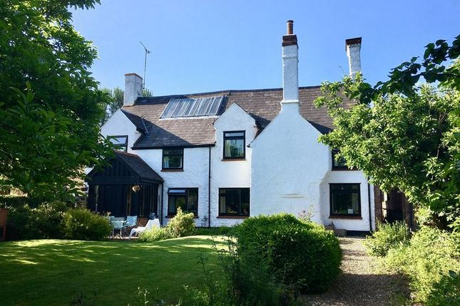 Thumbnail Detached house to rent in Halls Cottage, Fitzhead, Taunton, Somerset