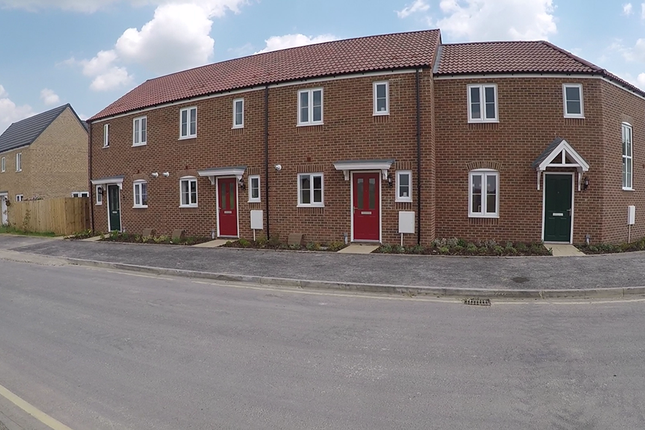 Thumbnail Terraced house to rent in Witham Road, Spalding
