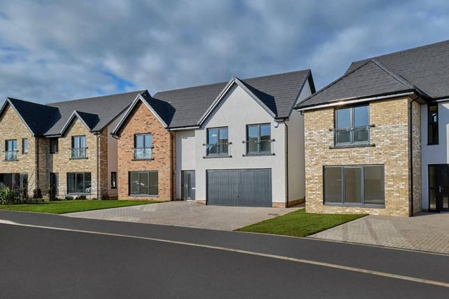 """Thumbnail Detached house for sale in """"Mitchell Garden Room"""" at Low Coniscliffe, Darlington"""