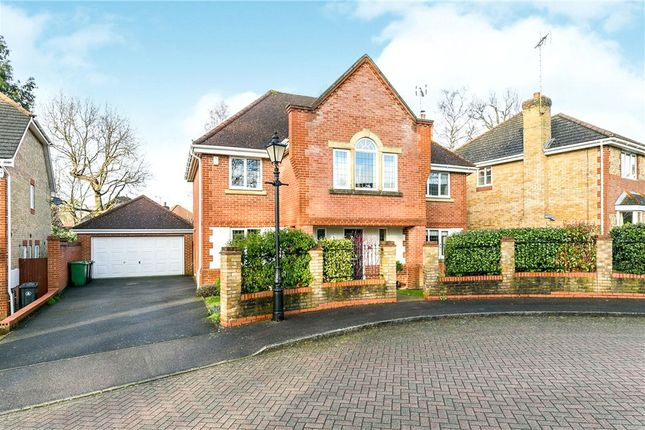 Thumbnail Detached house for sale in Ridgewood Drive, Frimley, Camberley